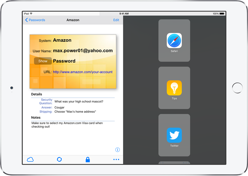 eWallet Password Management App Adds Multitasking on iPad Image